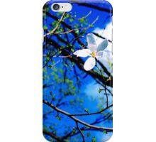 Spring Sky iPhone Case/Skin