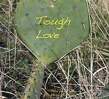 Tough Love by Alice Kahn