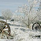 Frozen in Time by Ken McElroy