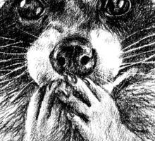 Surprised raccoon Sticker