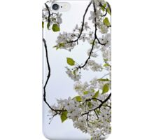 Under a canopy of white iPhone Case/Skin