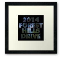 2014FHD Framed Print