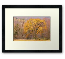 November Landscape Framed Print