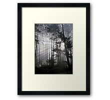 Light Must Have It's Way Framed Print