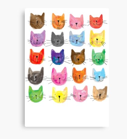 Colourful Kitties Canvas Print