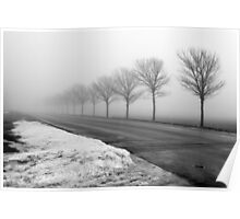 Misty Trees Poster