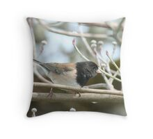 Junco Male Throw Pillow