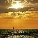 Sailing at Sunset, Apollo Bay by Roz McQuillan
