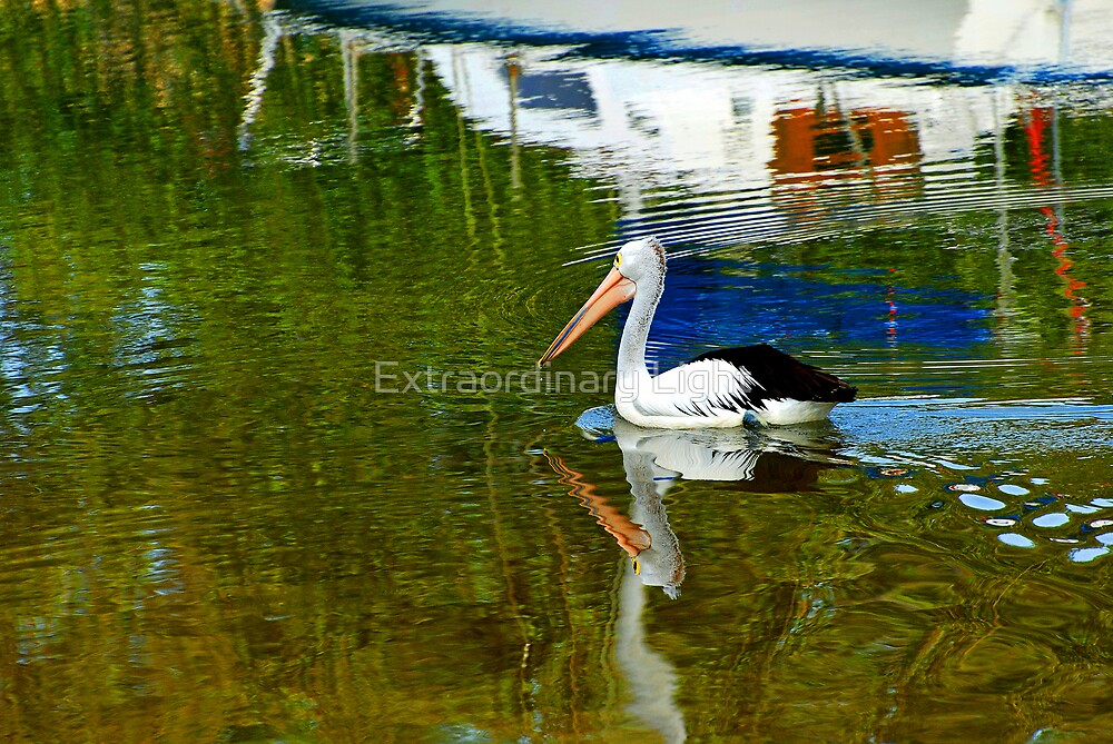 """""""Still Water Reflections"""" by Renee Hubbard Fine Art ..."""