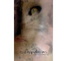 Cat Nap Dreams © Photographic Print