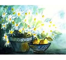DAISIES WITH PEARS IN PAINTED POTTERY - STILL LIFE  Photographic Print