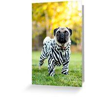 Zebra Pug Greeting Card
