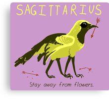 Sagittarius Mutant Horoscope Canvas Print
