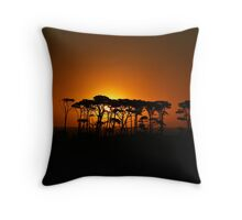Puniho Sunset - Taranaki NZ Throw Pillow