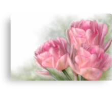 Angelique Tulips Canvas Print