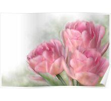 Angelique Tulips Poster
