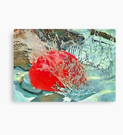 red ball splash  Canvas Print