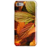 105mm Sigma iPhone Case/Skin