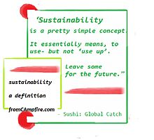 SUSTAINABILITY, a definition, Re-defining our world, Next Generation by fromCAmpfire