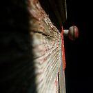 red doorknob 2 by charitygrace