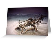 Tangled Surf Greeting Card