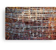 Rusty wire. Canvas Print
