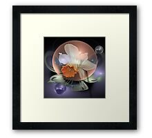 Daffodil in a water bubble Framed Print