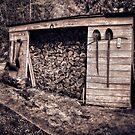 THE WOOD SHACK by Sandy Stewart