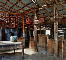 Orroral Shearing Shed by Steven  Agius