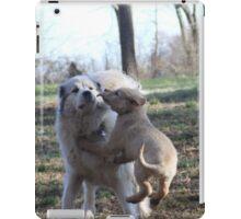 Udens & Goliath Playtime iPad Case/Skin