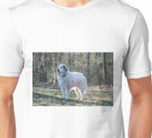 Goliath Intent  Unisex T-Shirt