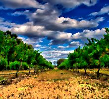 Oil Painting Vineyard by Maximus