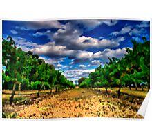 Oil Painting Vineyard Poster