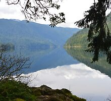 Lake Crescent, Washington by The Accidental Farmers