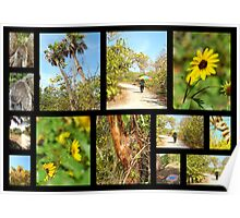 Black Island Nature Trail ( @ Lovers key State park )  Poster
