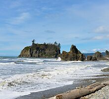Ruby Beach, Olympic Peninsula, Washington State by The Accidental Farmers