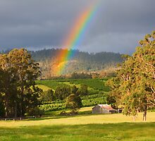 Rainbow over Orchard and Paddocks by Chris Cobern