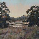 Dusk, Coonabarabran by Terri Maddock