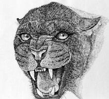 Black Leopard by sally seabright