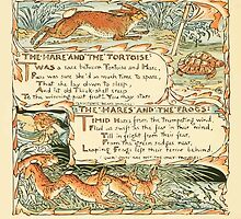 The Baby's Own Aesop by Walter Crane 1908-52 The Hare and the Tortoise, The Hares and the Frogs by wetdryvac