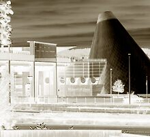 Tacoma Glass Museum Sepia Negative by Sarah McTernen