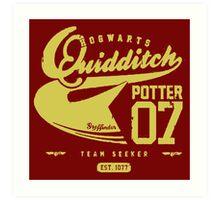 Potter Quidditch 07 Art Print