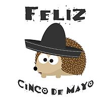 Feliz Cinco De Mayo Hedgehog by Eggtooth
