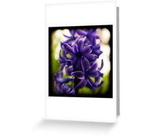 hyacinth TtV Greeting Card