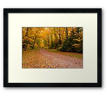 Yellow fall Driveway Framed Print