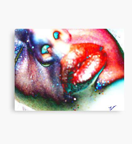 TwoFace  Canvas Print
