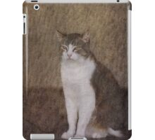 Watching and Waiting iPad Case/Skin