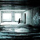 Stalker by Andre Pozdnyakov