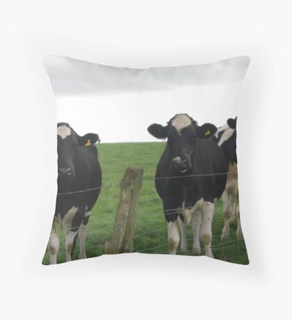 Cows keep watch! Throw Pillow