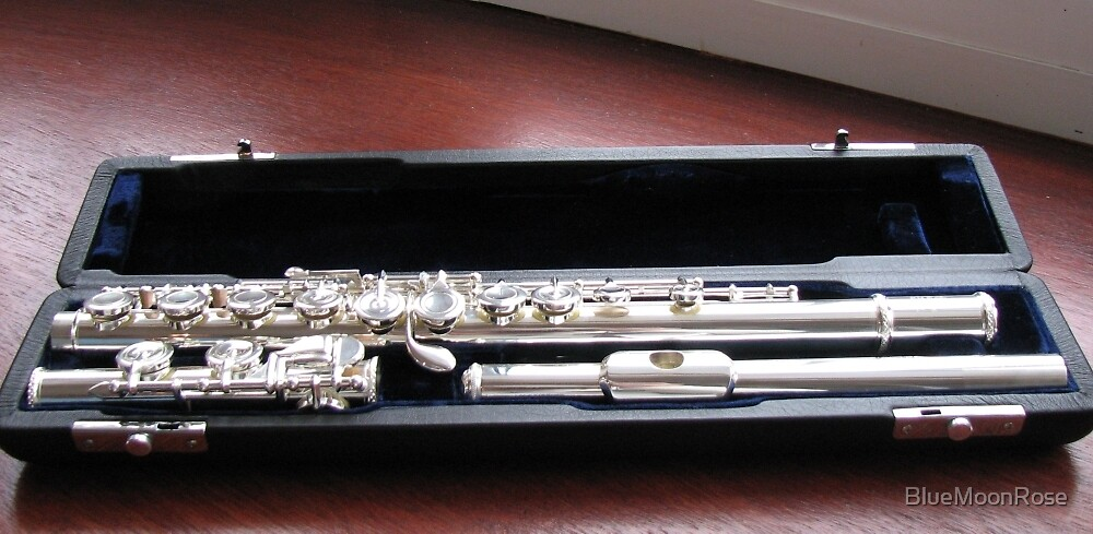 The Sound of Silver - A Flute in its Case by BlueMoonRose